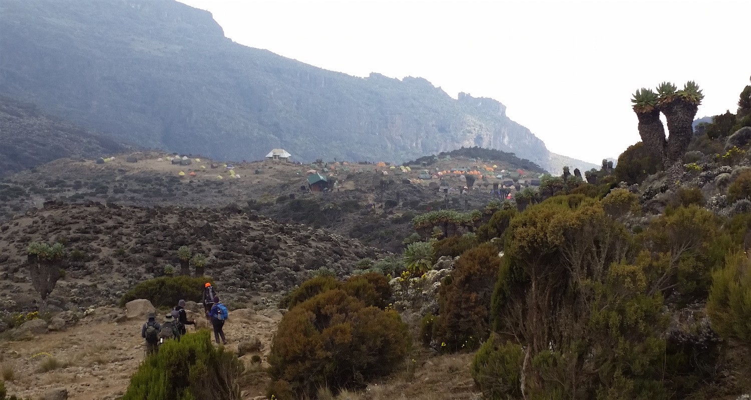 Barranco Camp came into view. The Barranco Wall rises beyond.