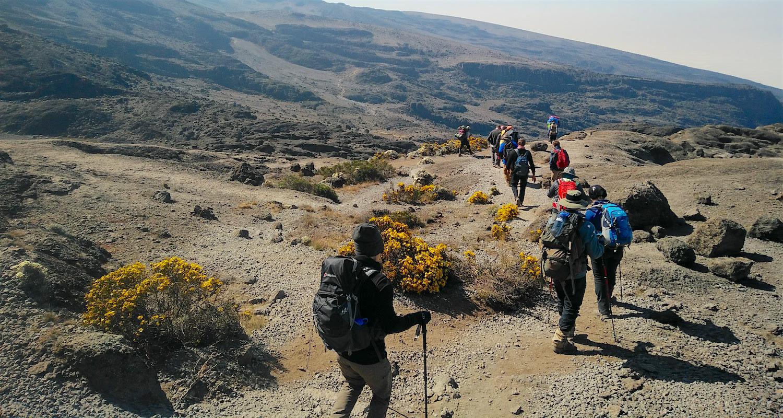 on the trail to karanga.jpg