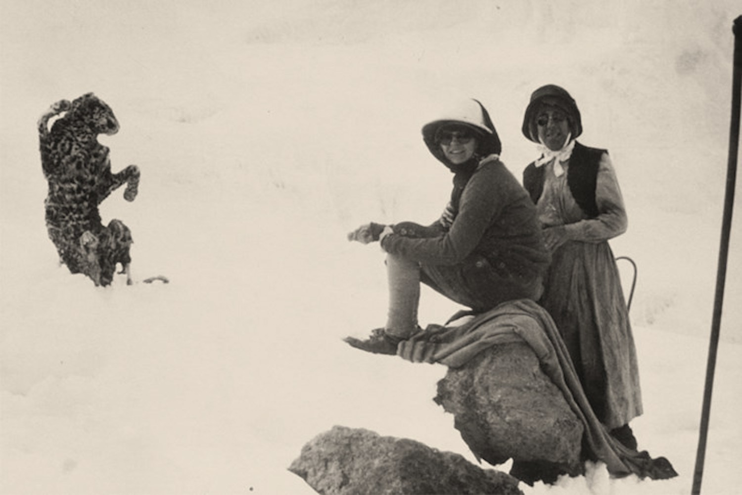 "A ""freeze-dried"" leopard found near the 18,500' mark on Kibo. This 1926 photograph may show Elisabeth Wiegand Müller, the first European woman to summit Kilimanjaro, and her guide Richard Reusch. Image from  here ."