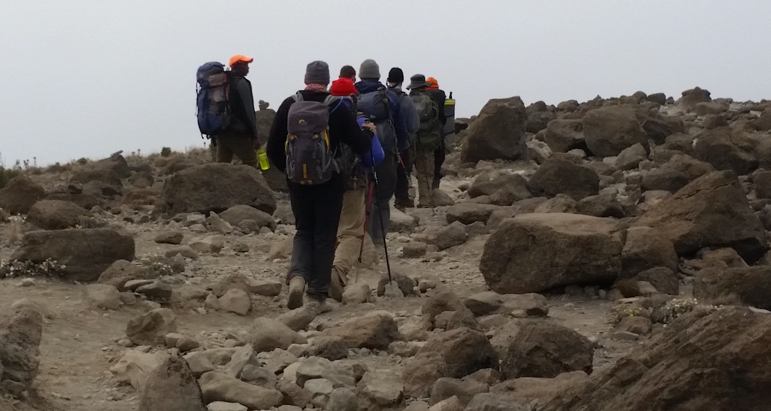 Our journey went from glacial ice to alpine desert to forest in a single day. It was a rugged downhill trek.