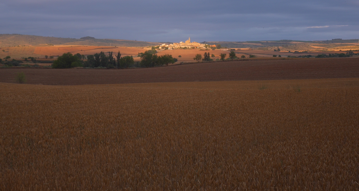 The sun rises on the La Rioja province of Spain. It is famous for cereal and wine production. While I've not been to Clavijo, I hiked a few miles north of it on my way to   Logroño.