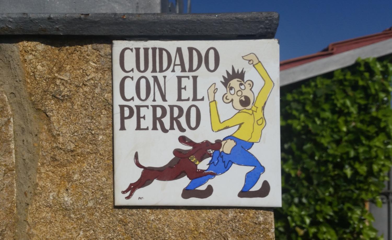 Beware of dog.jpg