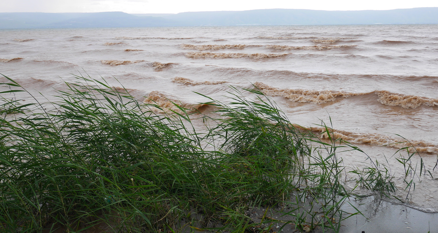 The Sea of Galilee was muddy and stirred.
