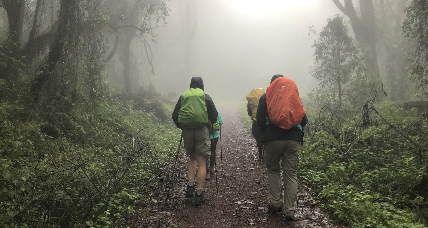 Hiking through the mist and mud of Kilimanjaro's rainforest.