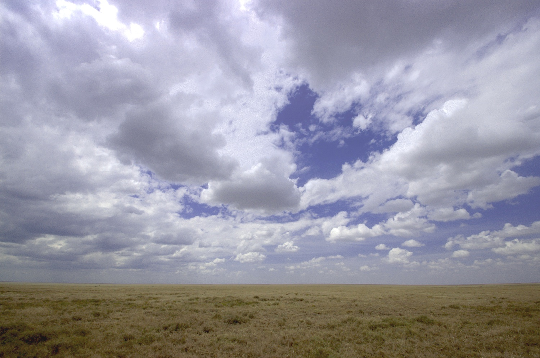 Big+sky.jpg