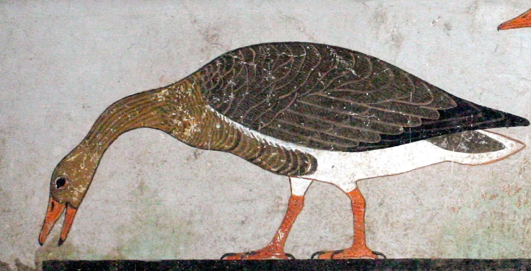 Detail of the Meidum Geese. Image from    here    (accessed 10?13/2019).