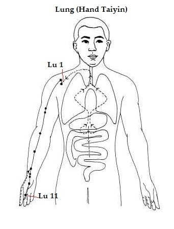 lung meridian how yin yoga can stop your uncontrollable