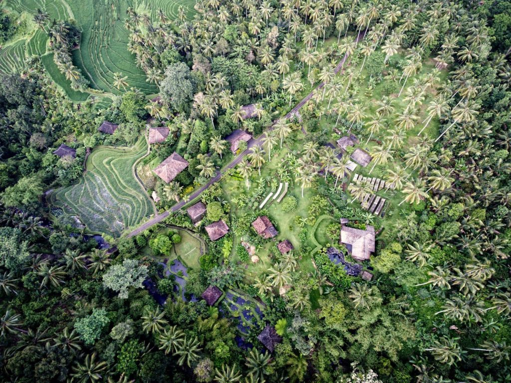 Bali eco stay 200hr Hatha yoga teacher training annie au yoga feb 2020