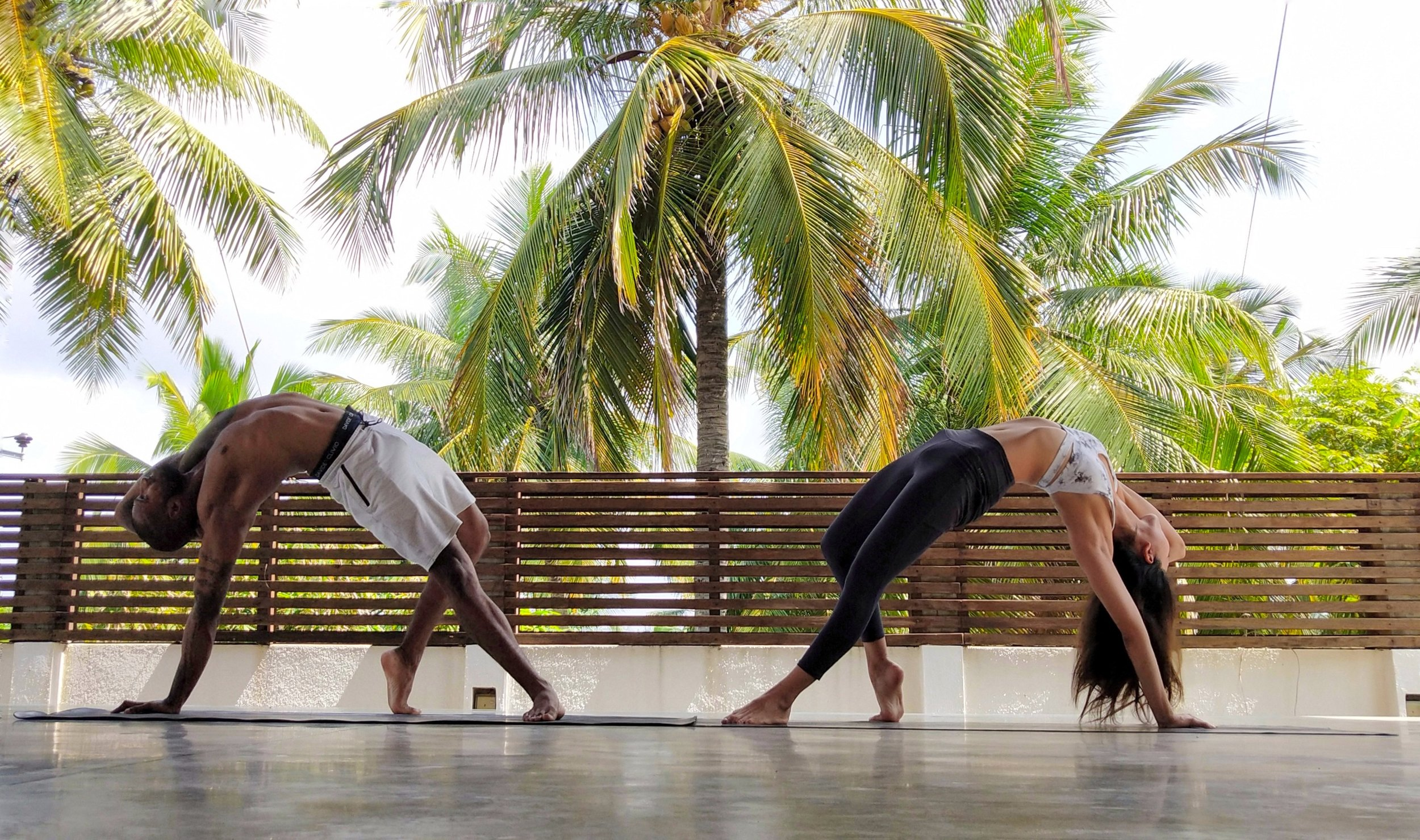 200hr Hatha Vinyasa Yoga Teacher Training Bali 2020