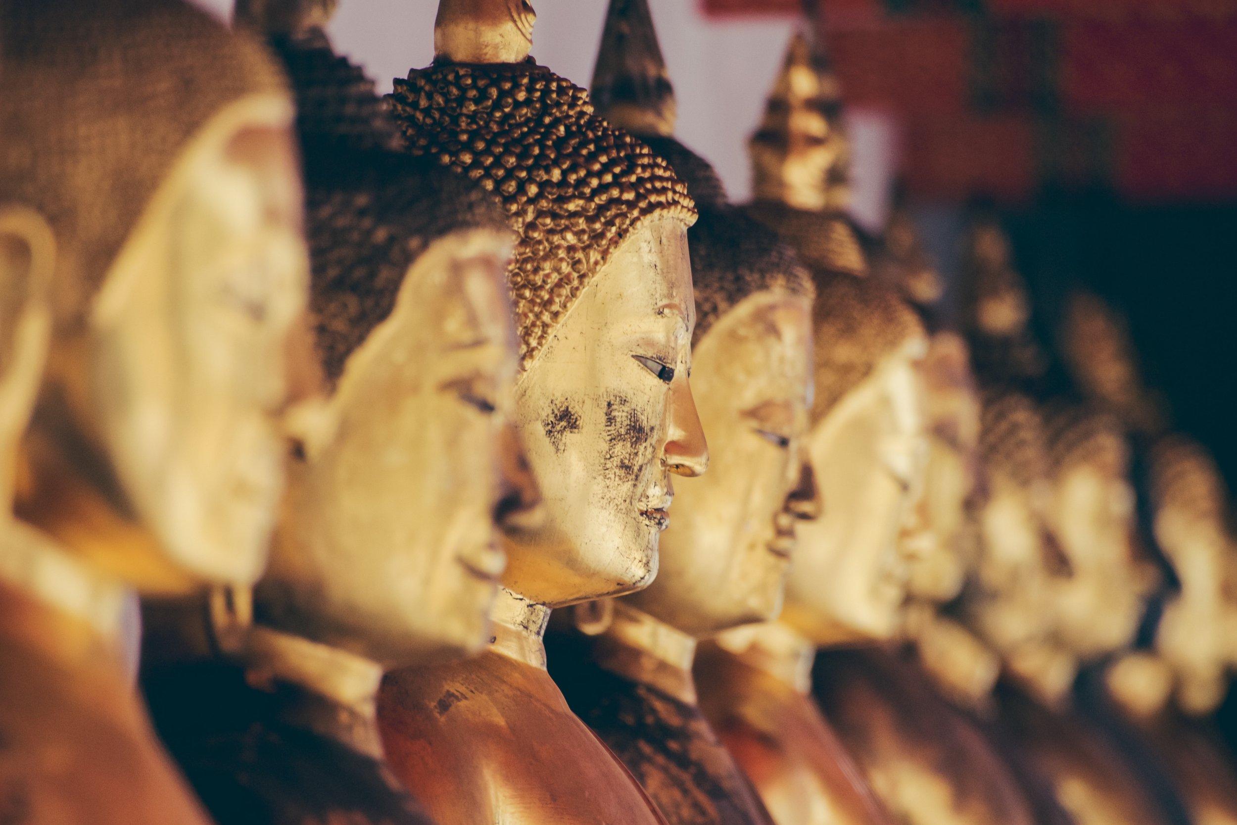 Sri Lanka Yin Yoga & Meridians Teacher Training Annie Au Yoga