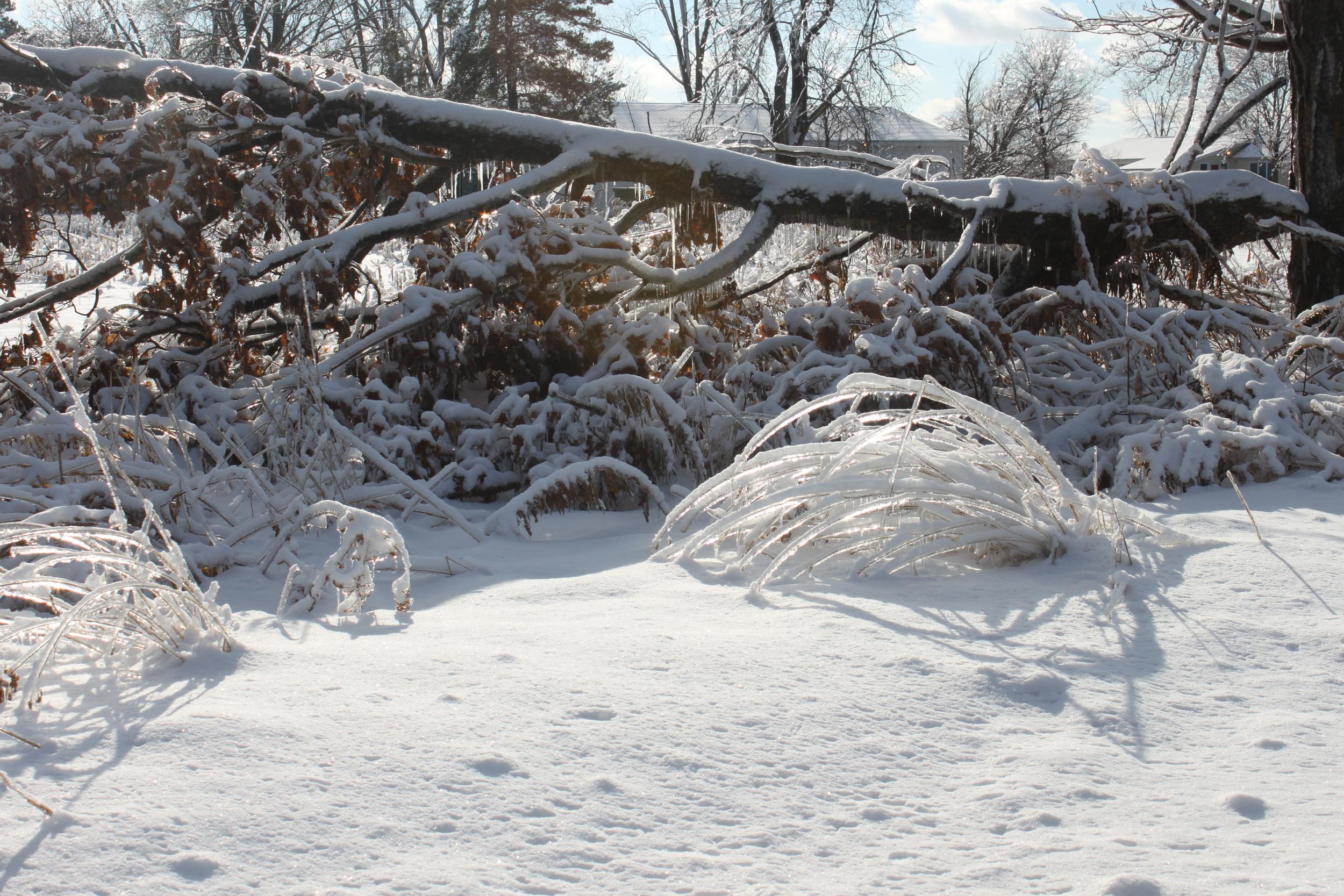 icestorm.jpeg.JPG