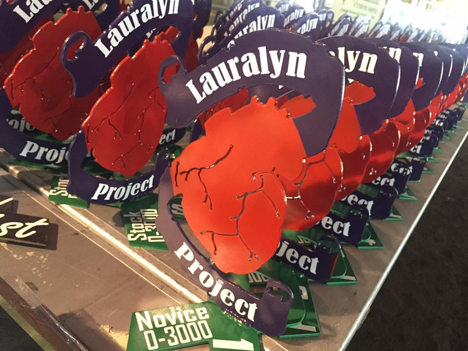 Lauralyn Project donates to LOPA