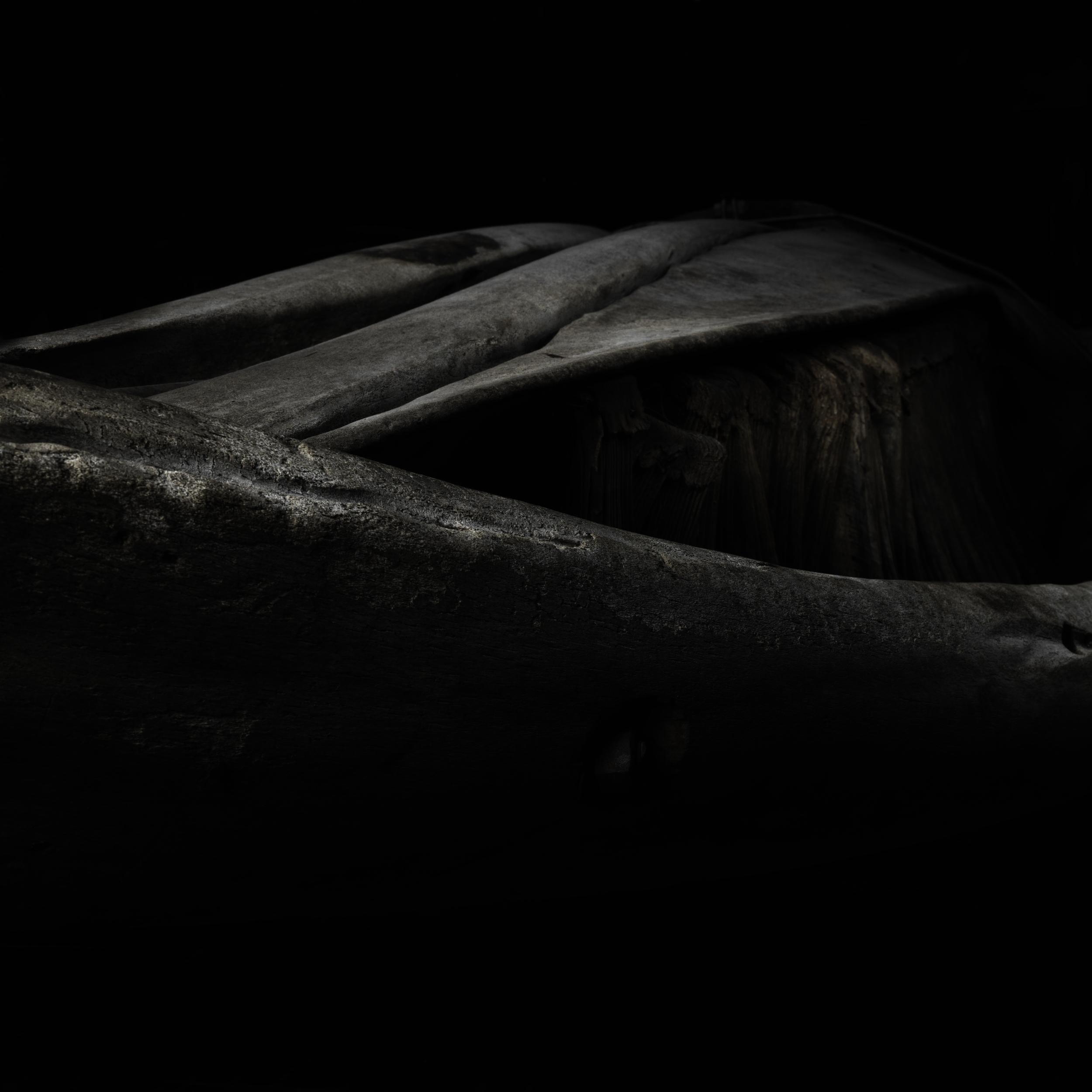 Whale bone #3