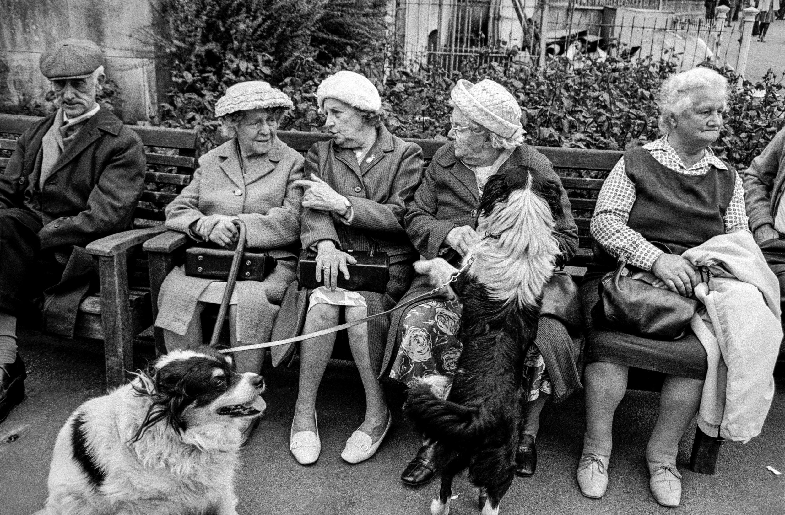 Pensioners in Brockwell Park, 1974