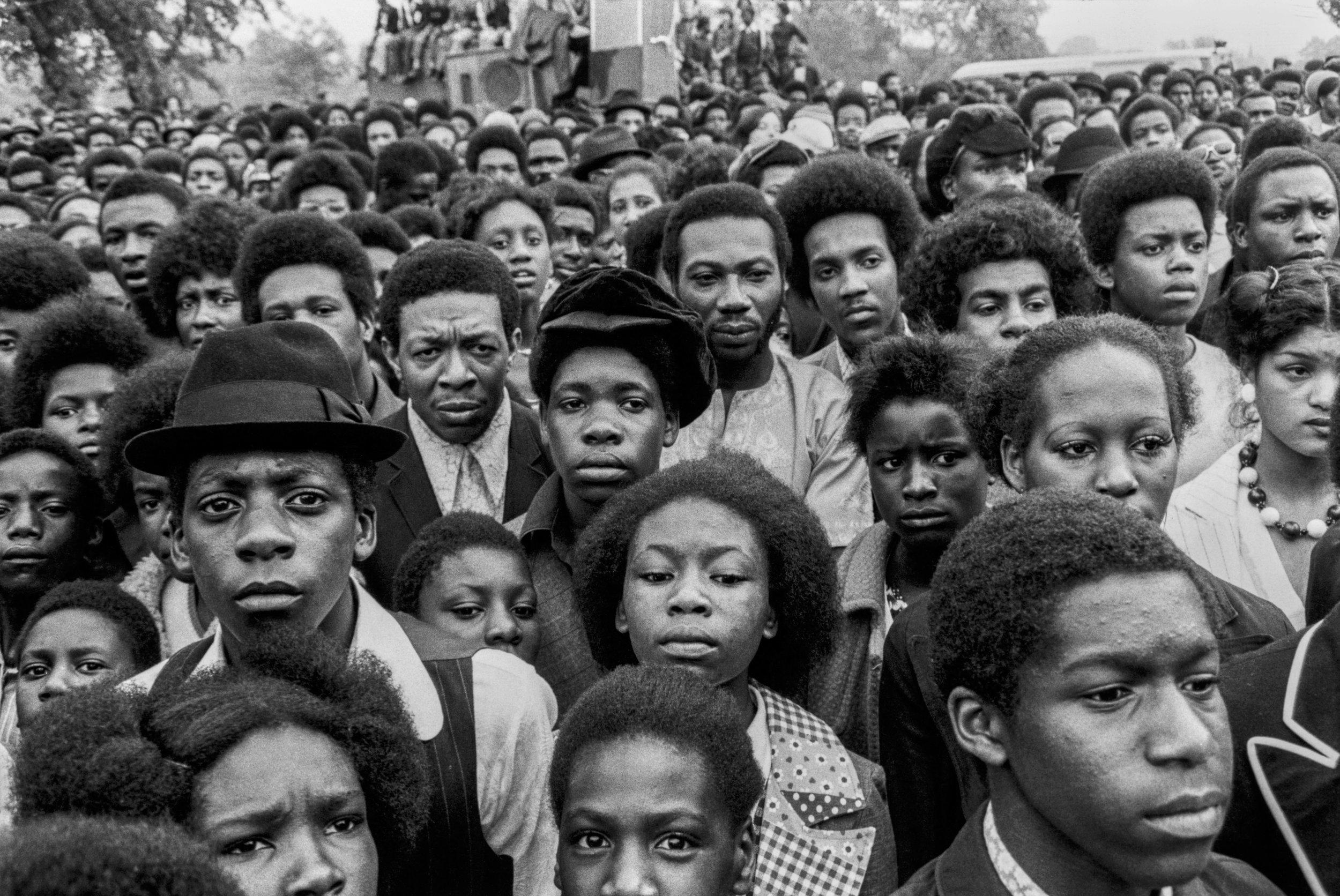 Reggae Festival, 1974
