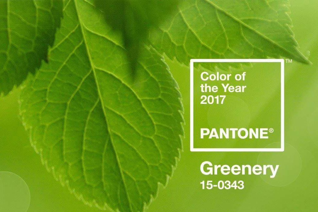 'Greenery' is Pantone's Colour of the Year 2017