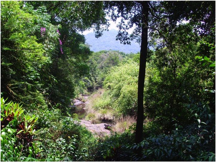SAI Sanctuary 2009.jpg