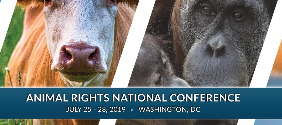 AR Conference 2019.jpg