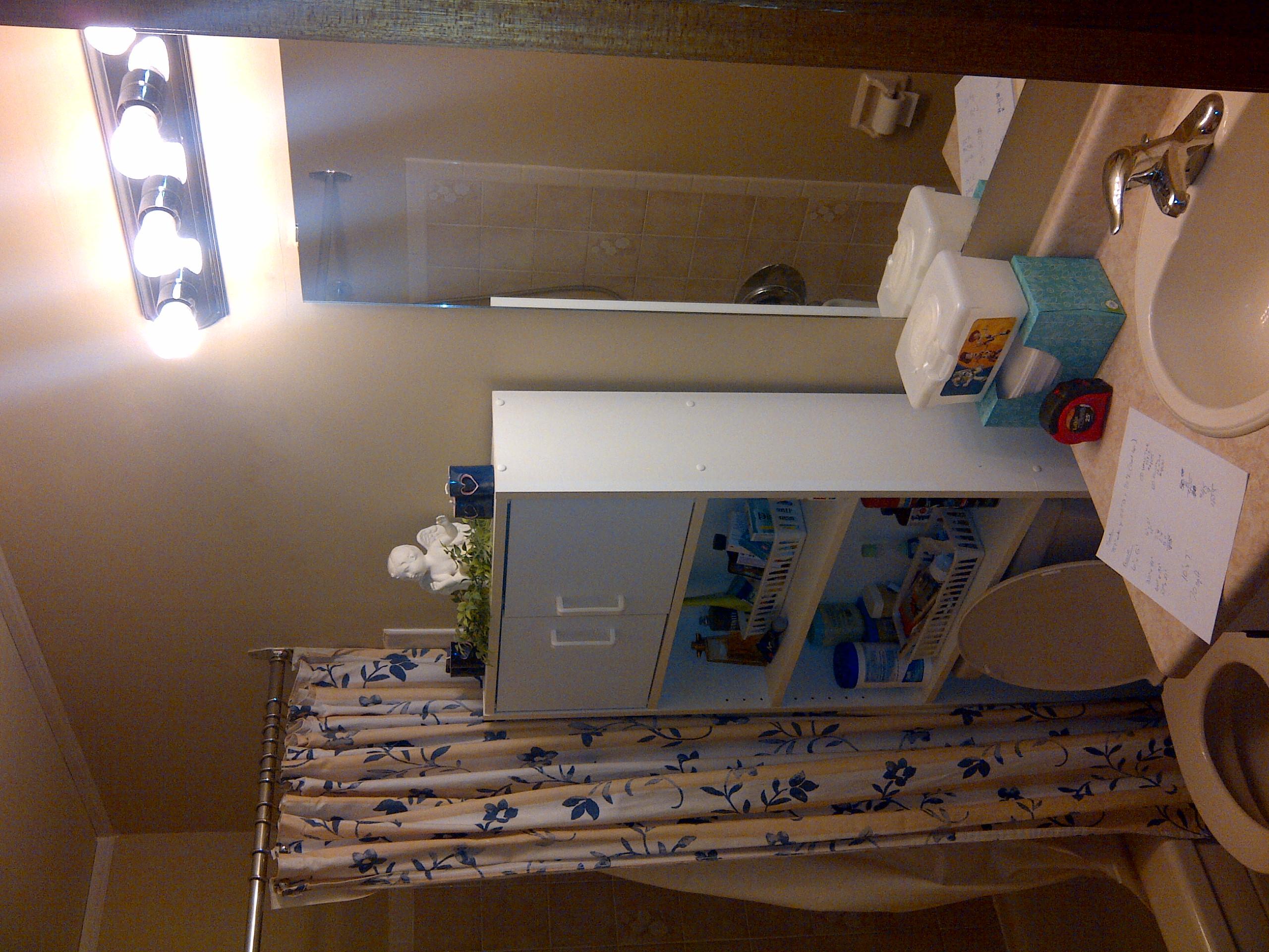 Bathroom Reno Construction Phase 1 (2).jpg