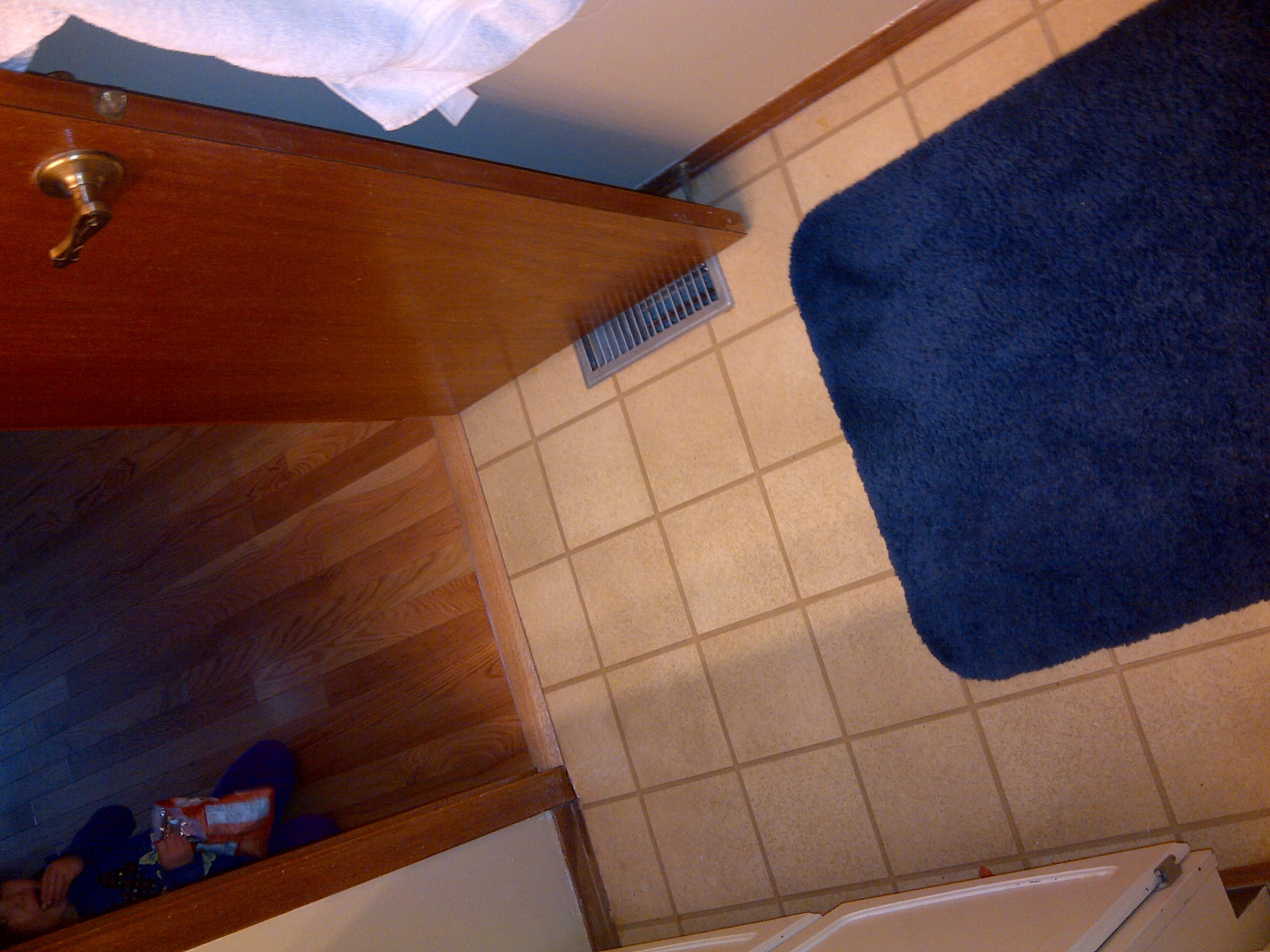 Bathroom Reno Construction Phase 1 (7).jpg