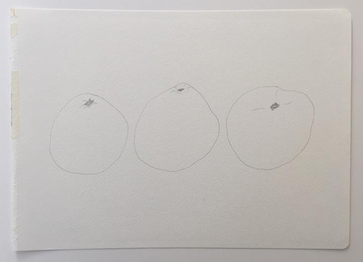 "ensō | grapefruit (02), 2015 | graphite on paper | 8.25"" x 11.75"""