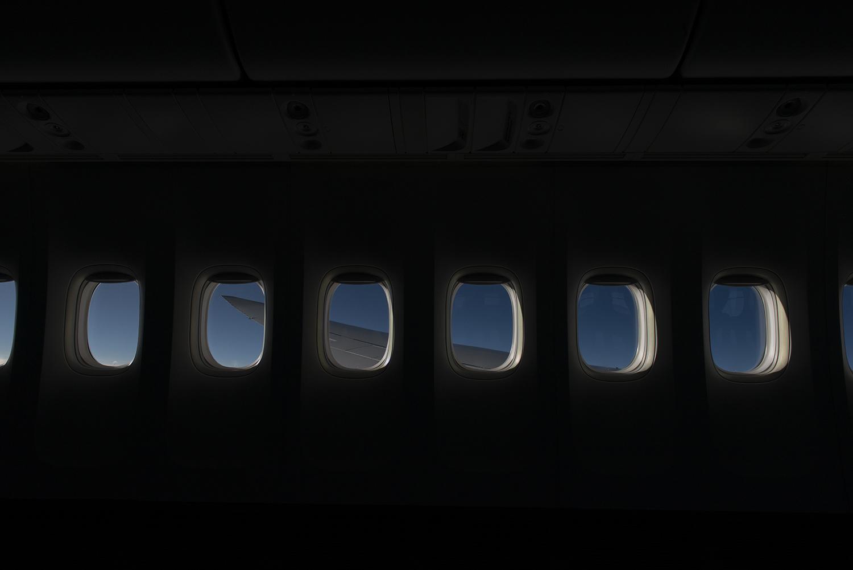 YT wing graphic (1 of 1) original.jpg