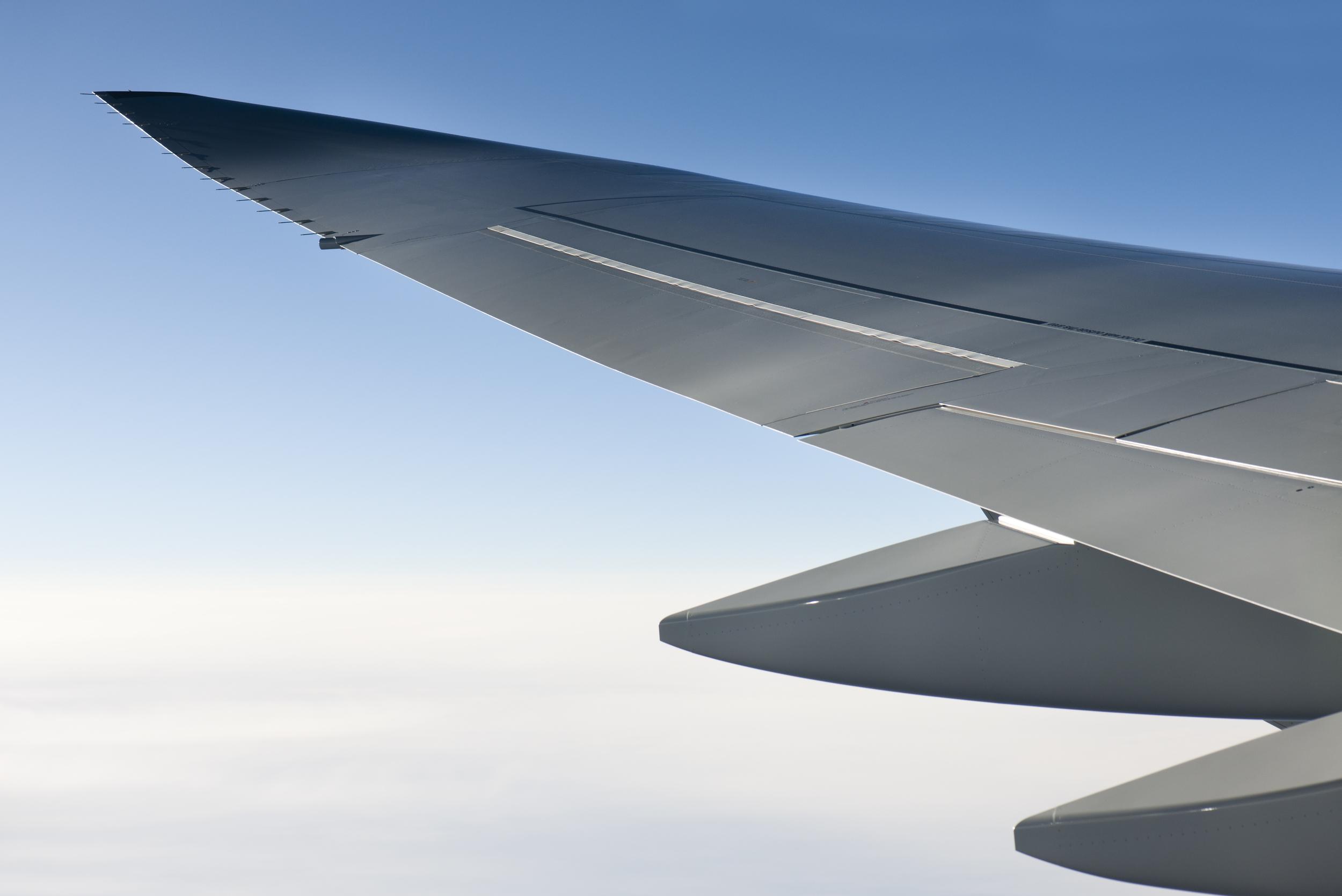 YT wing original.jpg