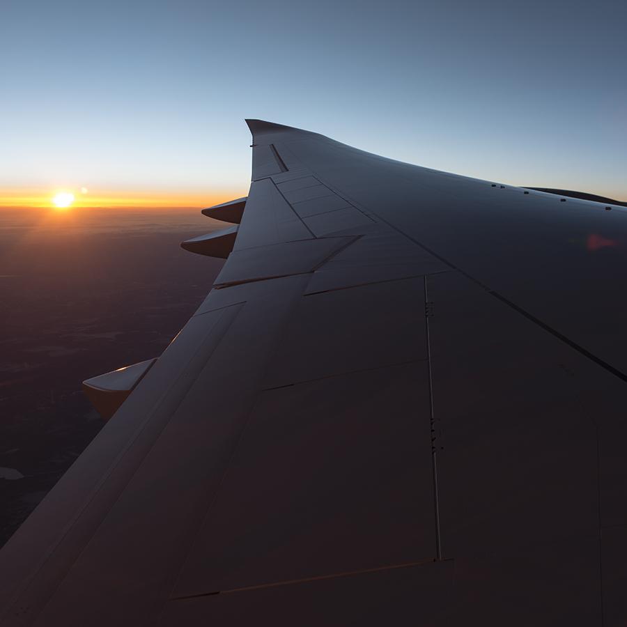 YT wing sunset  (1 of 1) square.jpg
