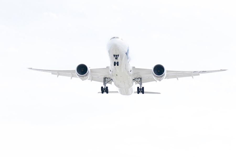 Laird Aero LOT 787 White Out.jpg