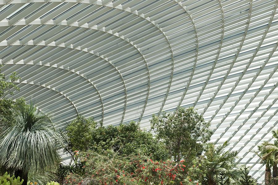Gardens on Singapore No. 4