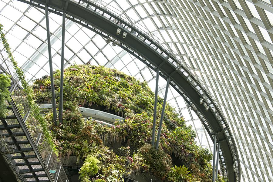 Gardens on Singapore No. 7