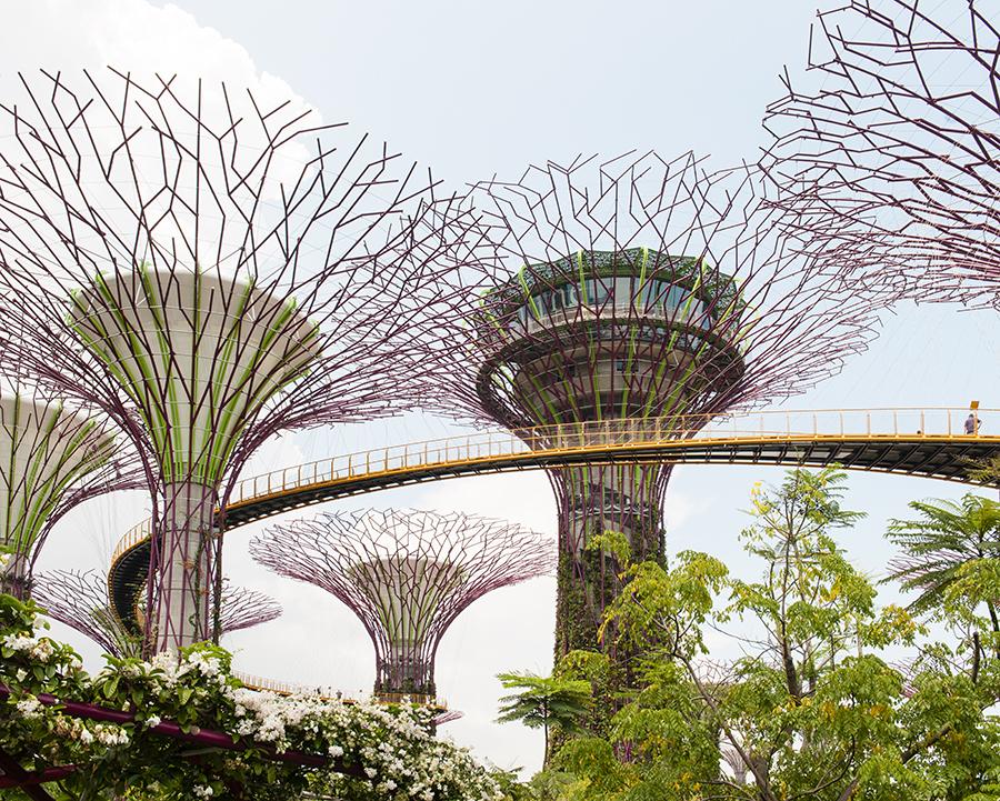 Gardens on Singapore No. 1