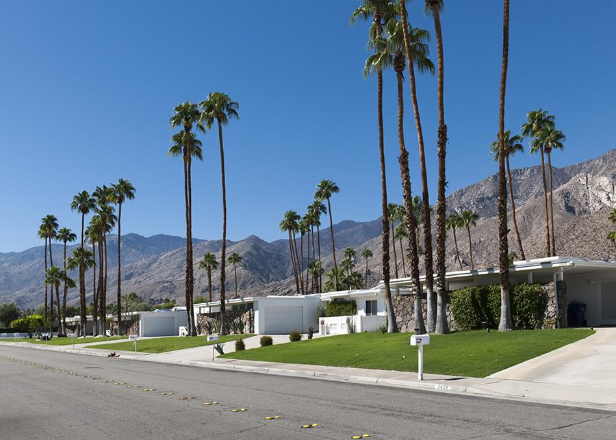 Gardens of Palm Springs No. 4