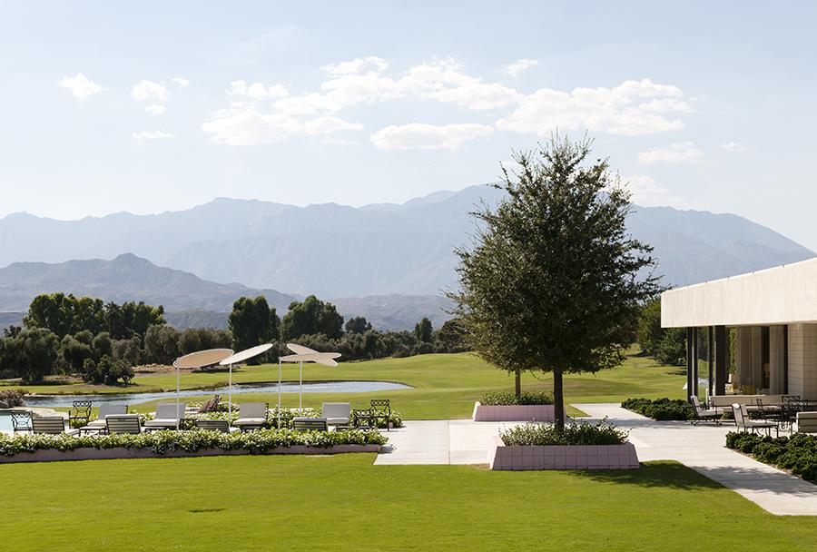 Gardens of Palm Springs No. 5