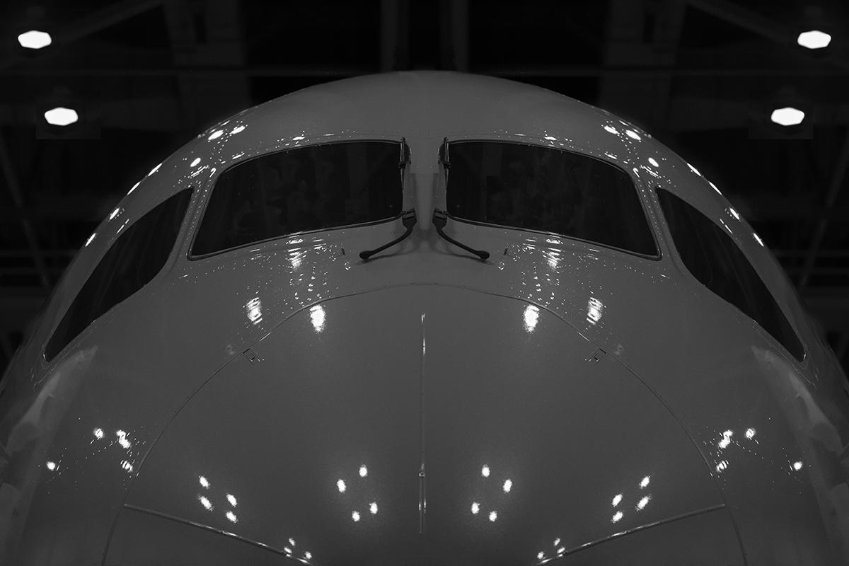 Plane Metal - 787 in the hangar.jpg