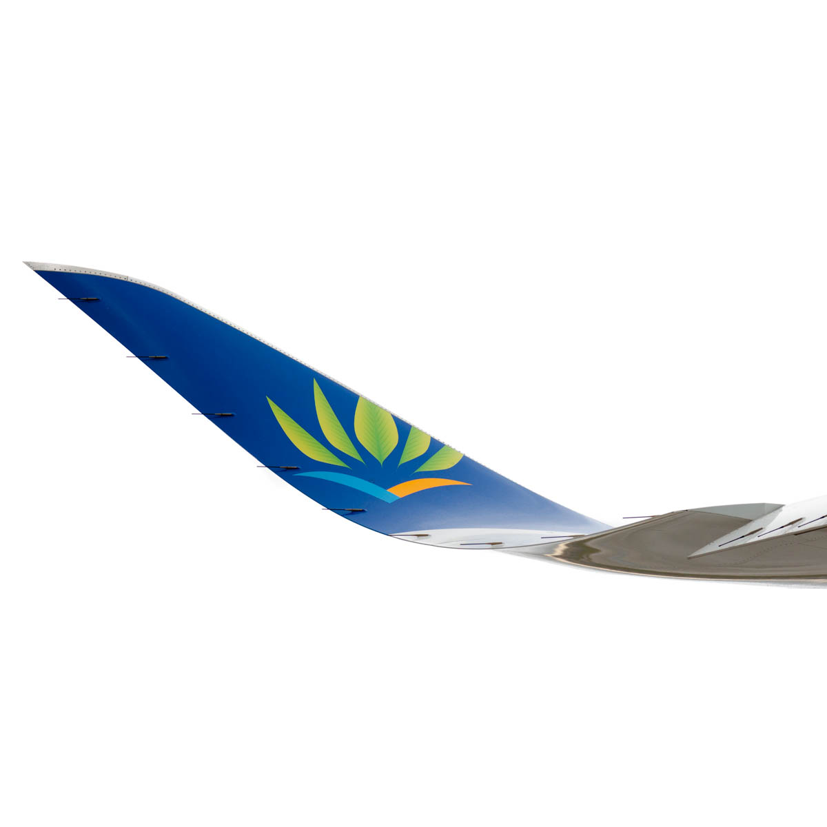 air cariibes a350 winglet (1 of 1).jpg