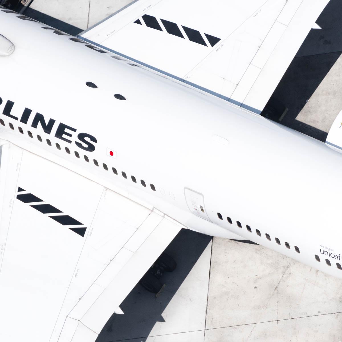 JAL wing (1 of 1).jpg