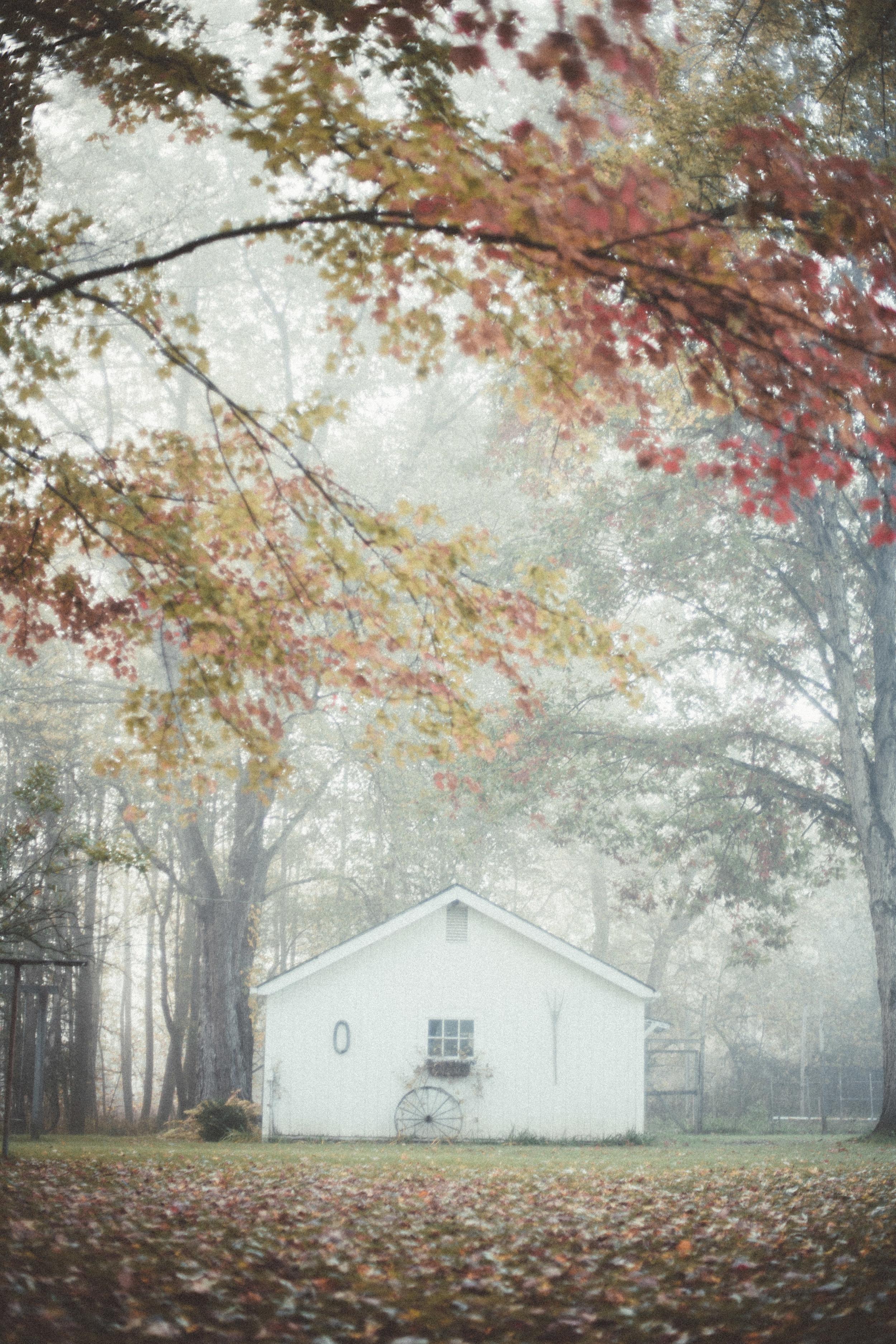 fog-railroad-73.jpg
