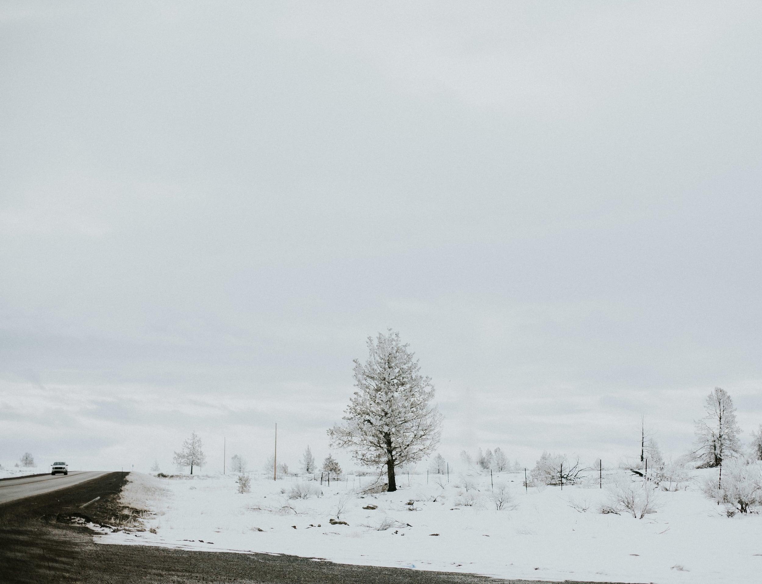 hills-76.jpg