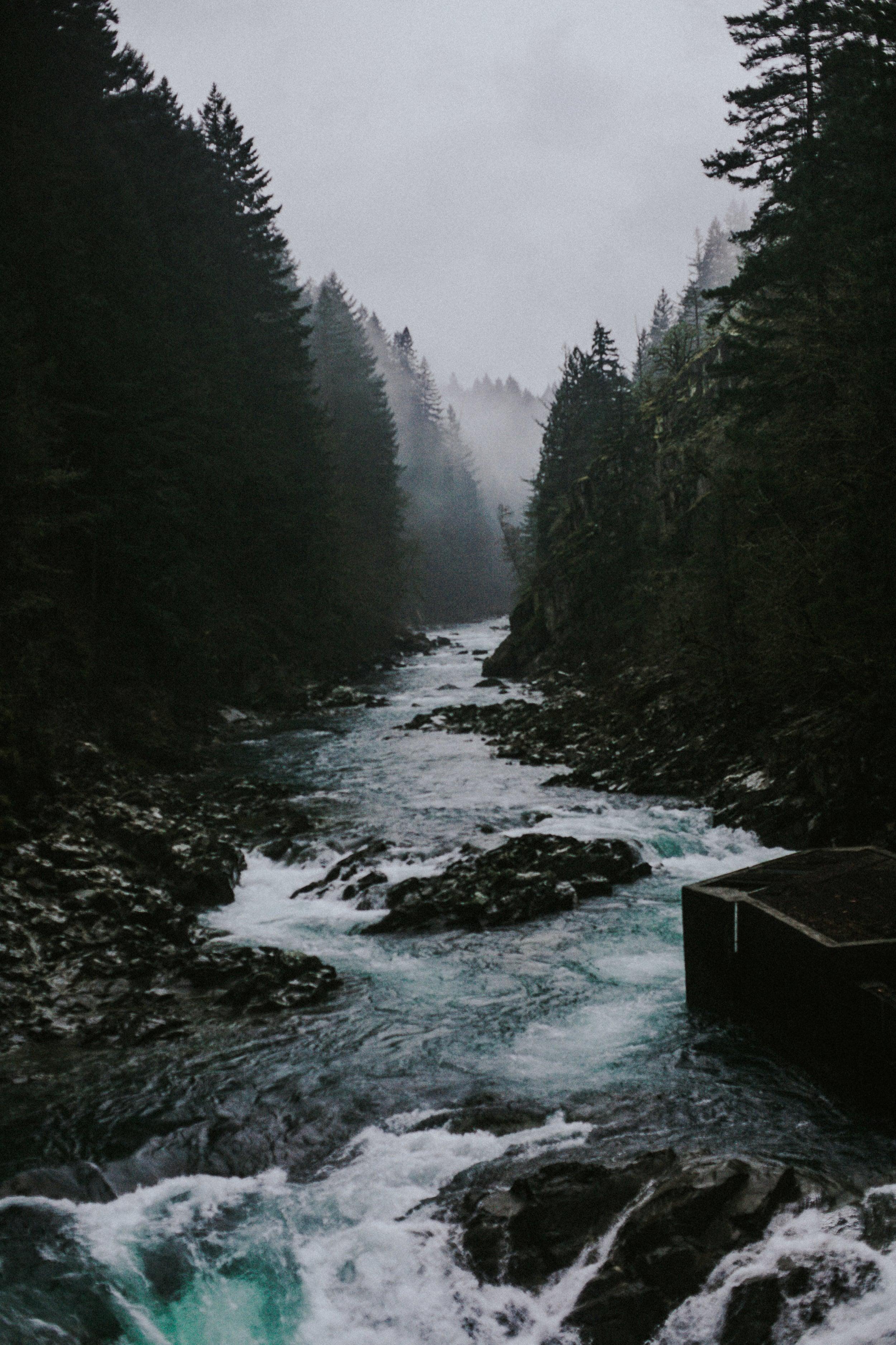 bridge-47.jpg