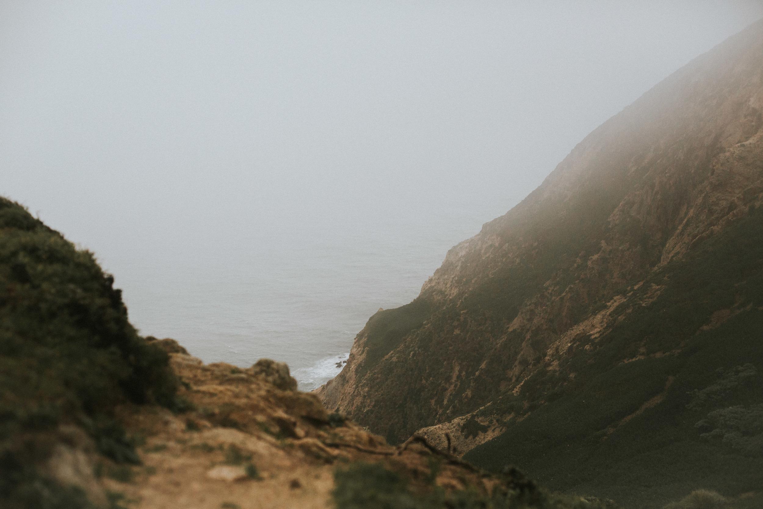 pointreyes-fog-47.jpg
