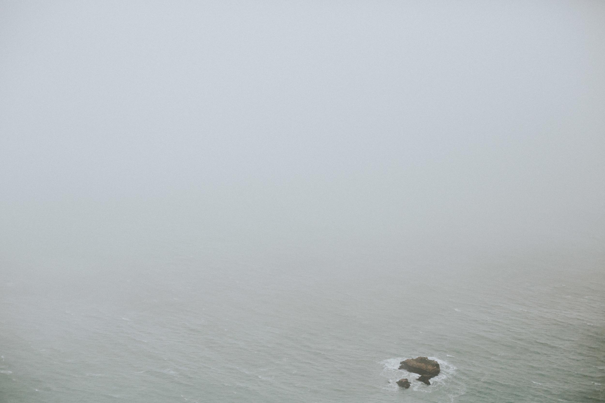pointreyes-fog-34.jpg