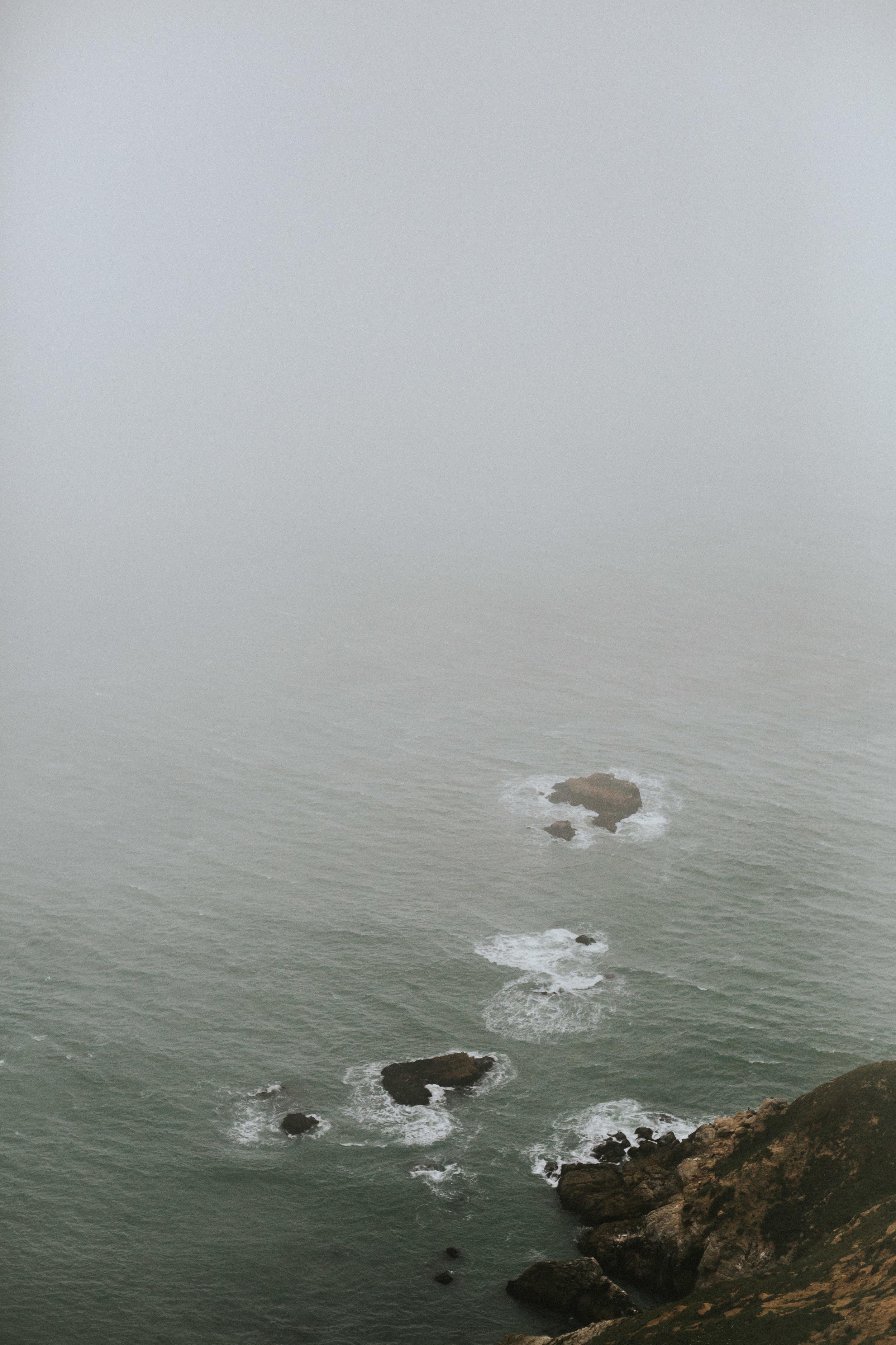 pointreyes-fog-37.jpg