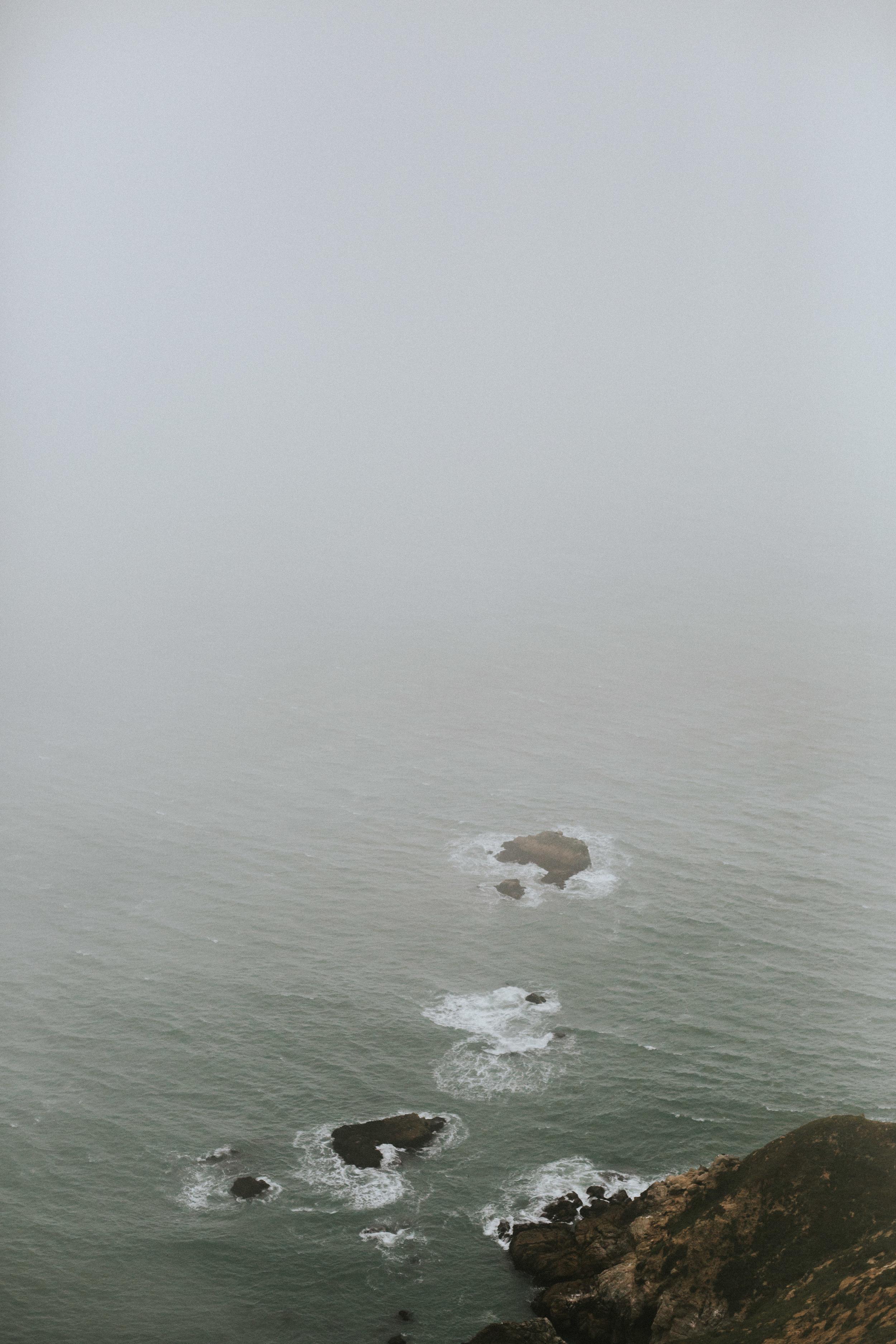 pointreyes-fog-38.jpg