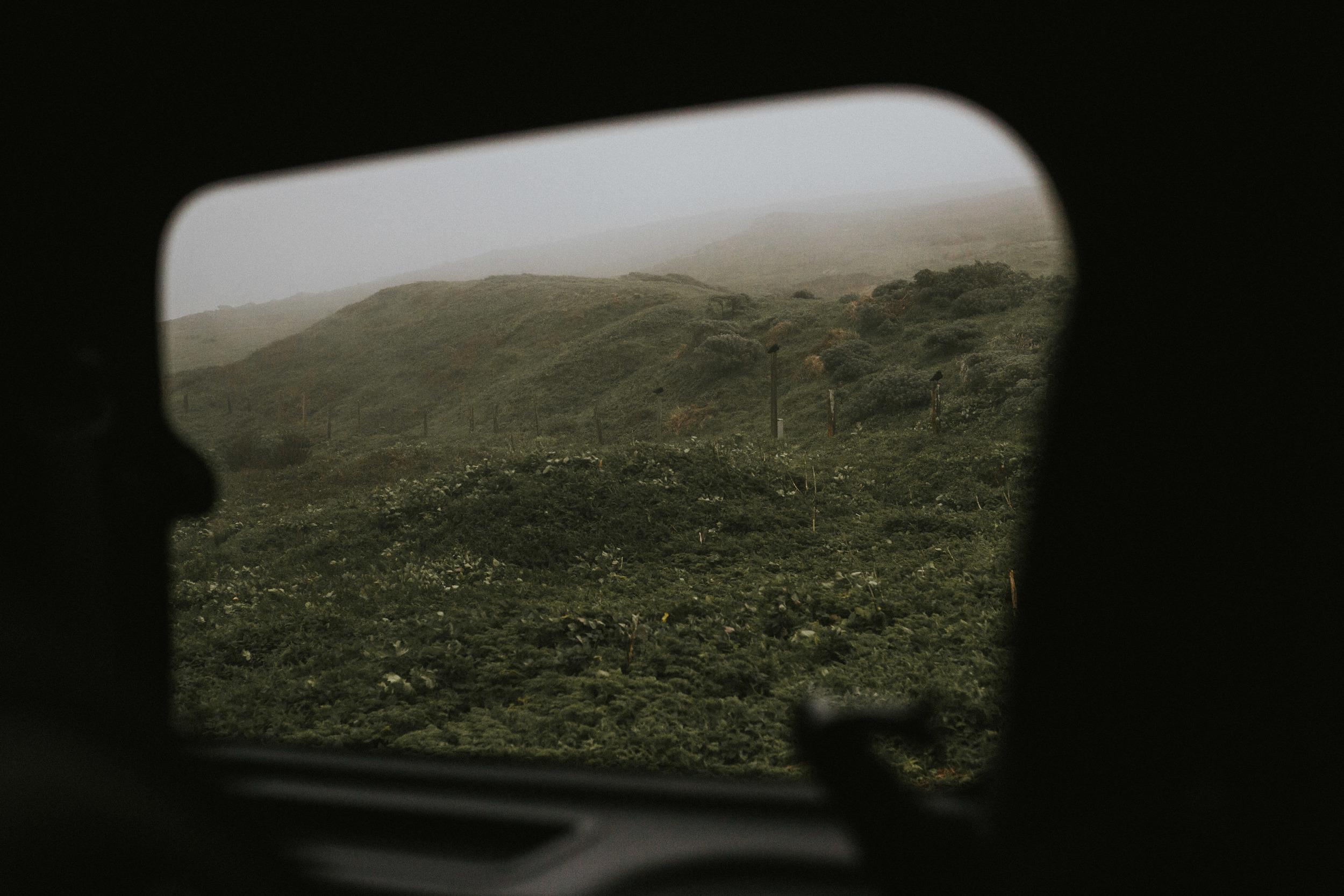 pointreyes-fog-16.jpg
