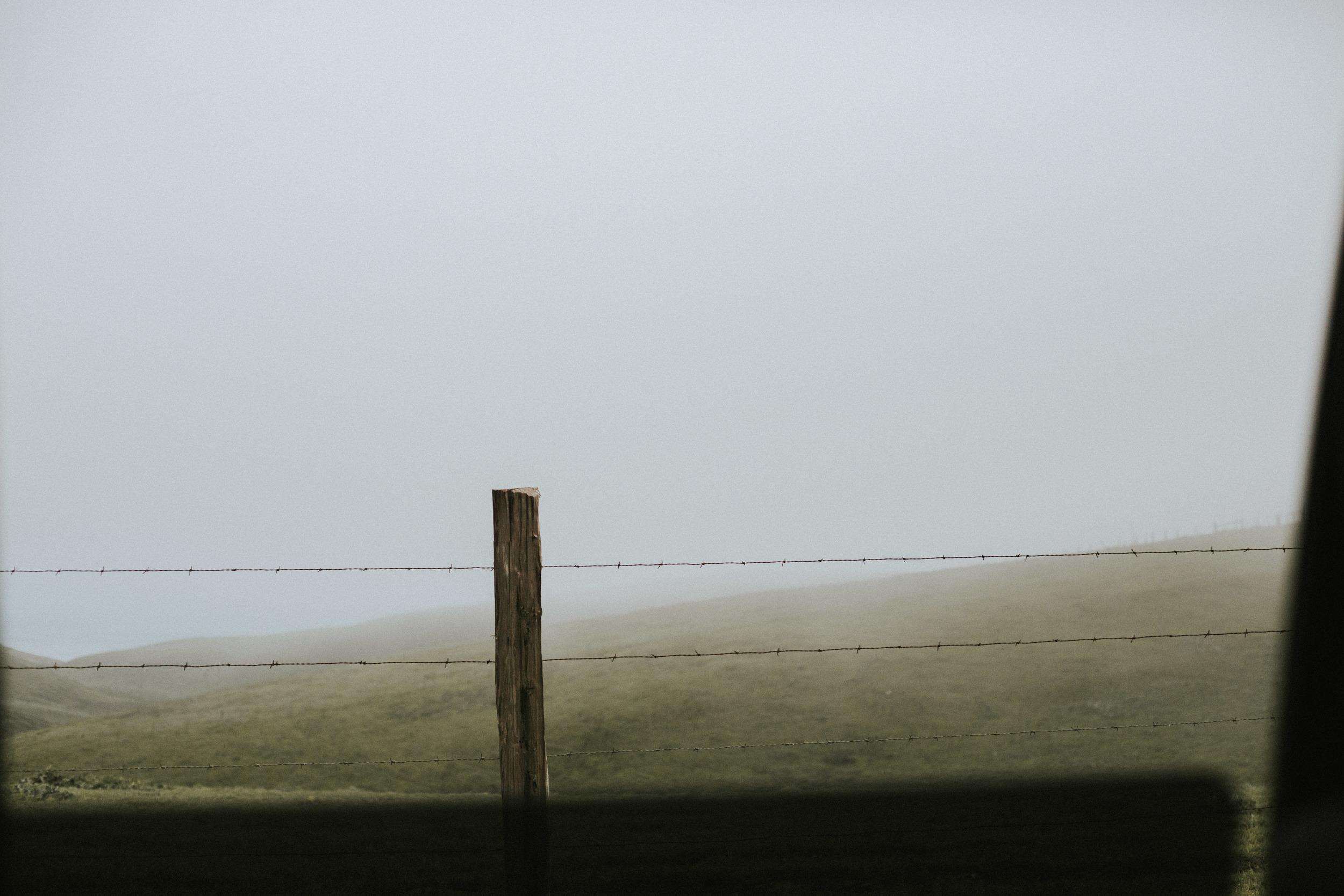 pointreyes-fog-2.jpg