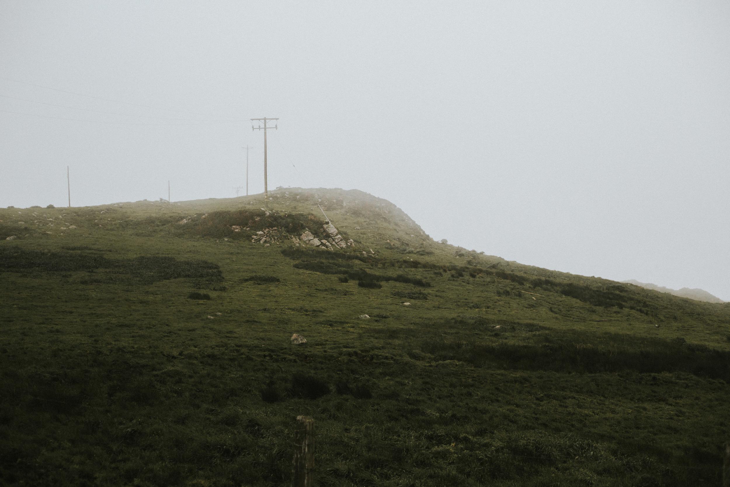 pointreyes-fog-13.jpg