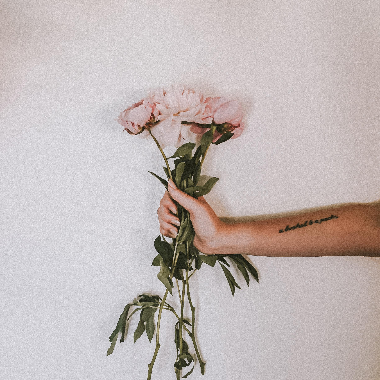 pretties-3.jpg