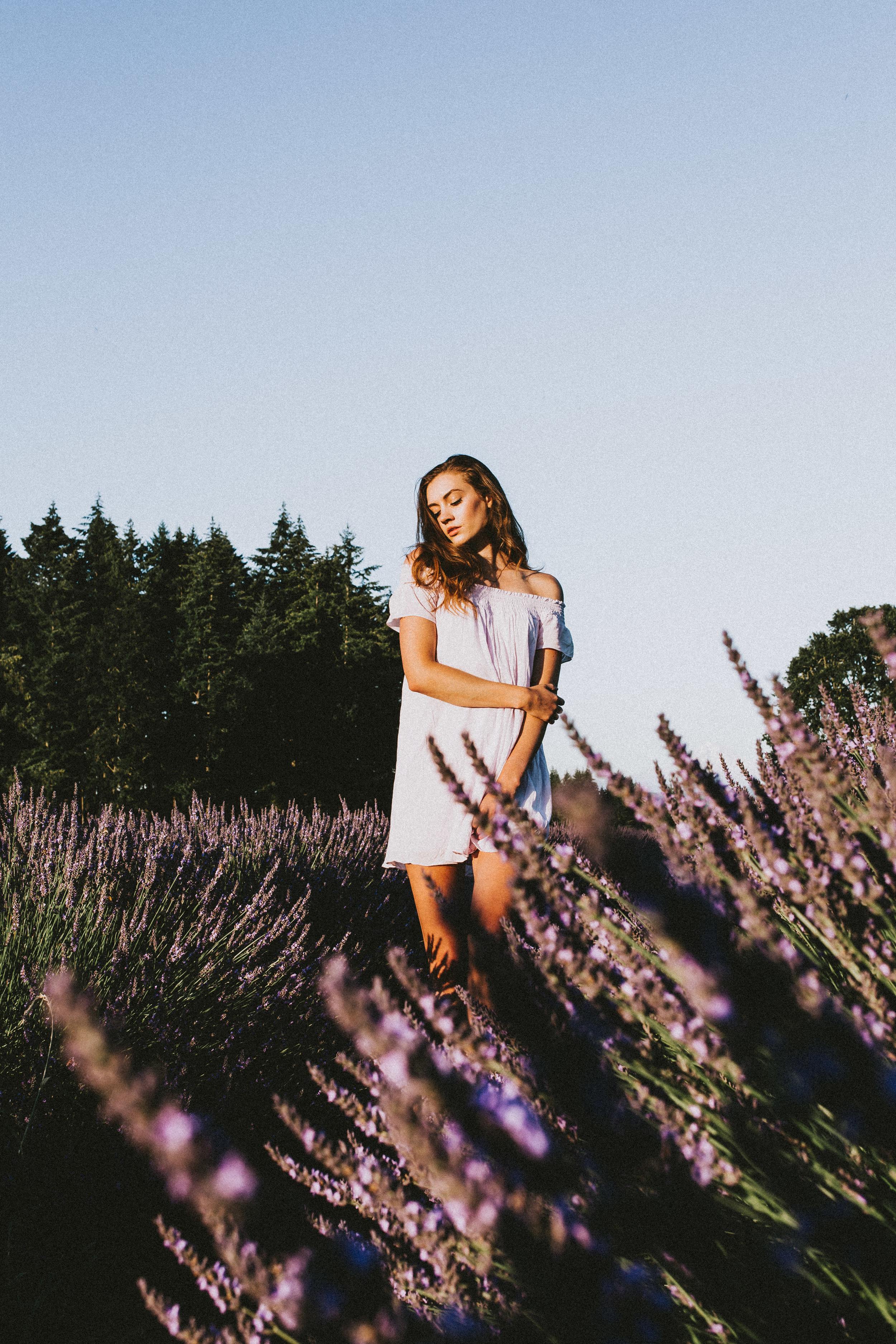 samlandreth-lavender-8.jpg