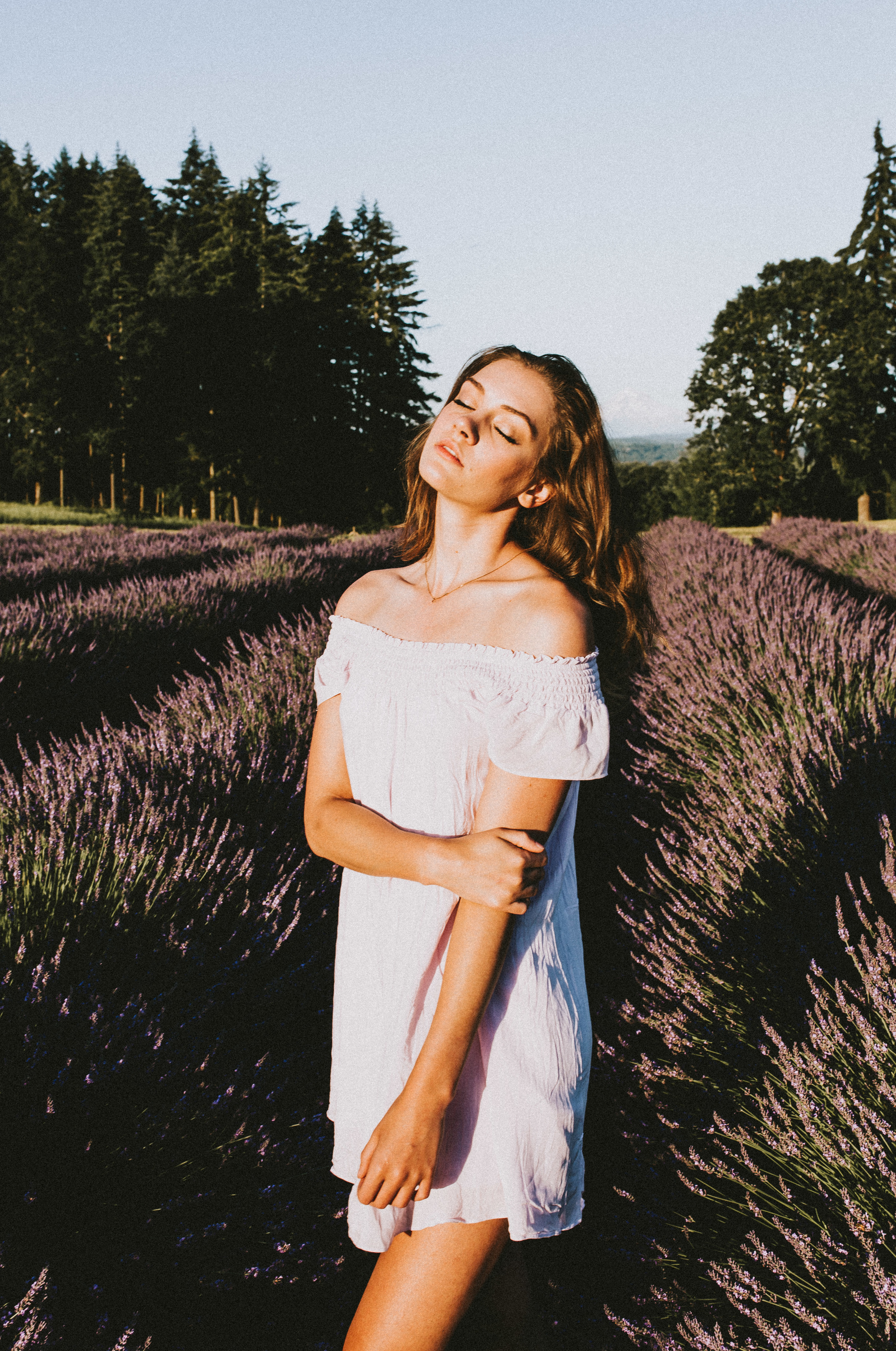 samlandreth-lavender-13.jpg